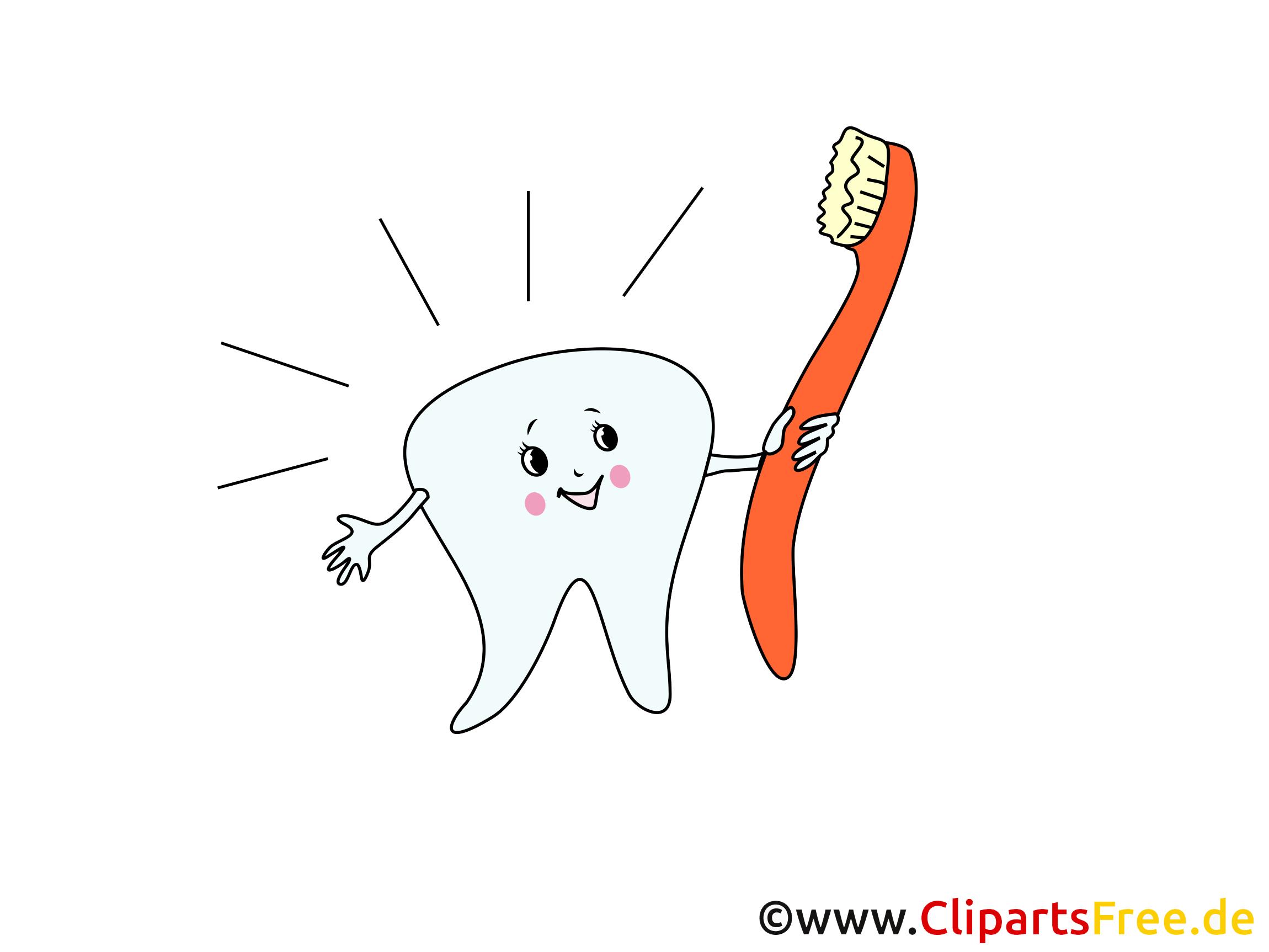 Brosse à dents clipart.