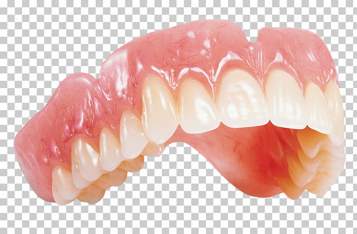 Dentures Dental laboratory Dentsply Sirona Dentistry, others.