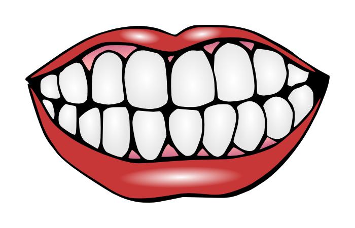 Dental clipart dentures, Dental dentures Transparent FREE for.