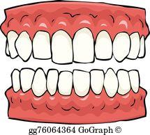 False Teeth Clip Art.