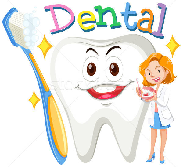 Female dentist with clean tooth vector illustration © Daniel.