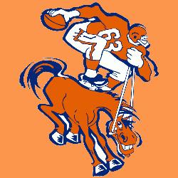 Denver Broncos Primary Logo.