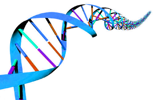 Dna clipart gif.