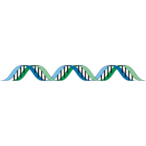 DNA clipart, cliparts of DNA free download (wmf, eps, emf, svg.