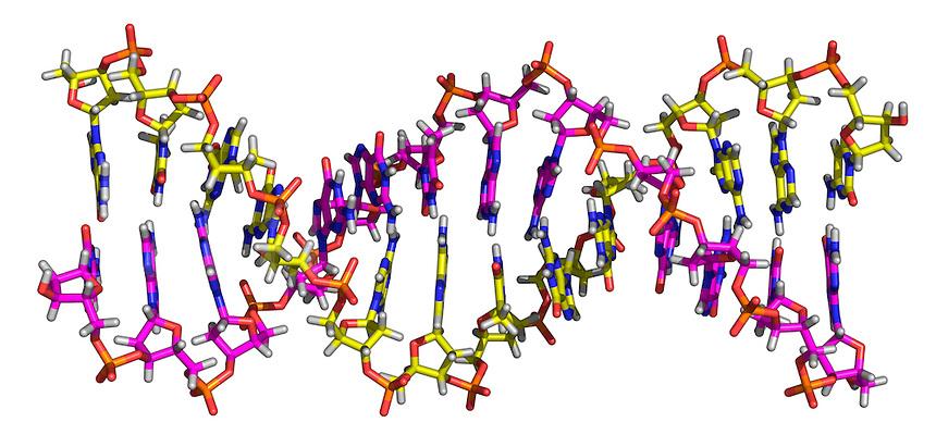 DNA Helix Molecule.jpg.