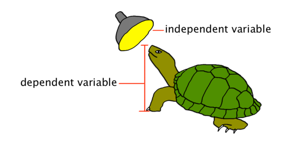 Dependent variable science clipart.