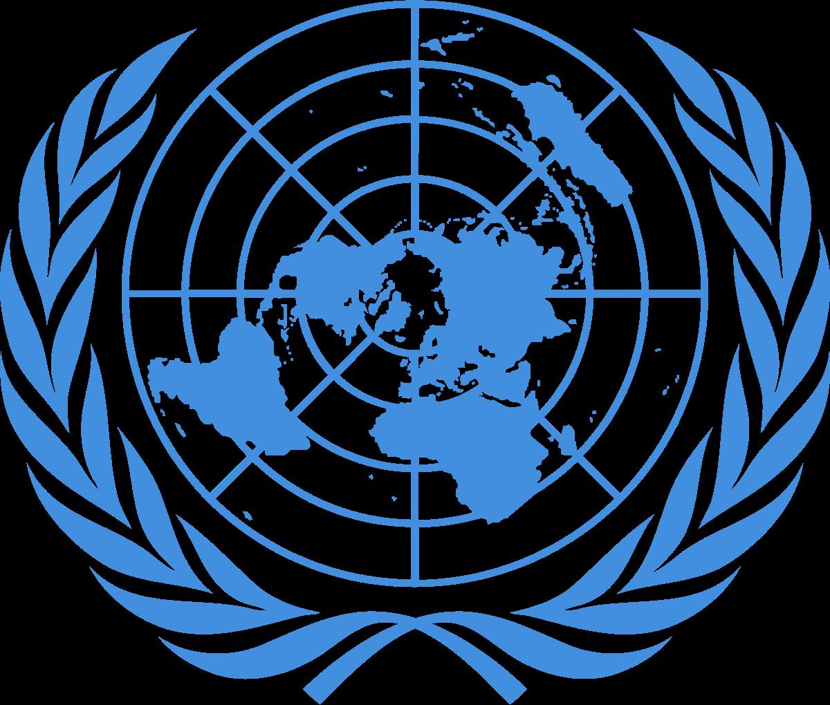 Oficina del Alto Comisionado de las Naciones Unidas para los.