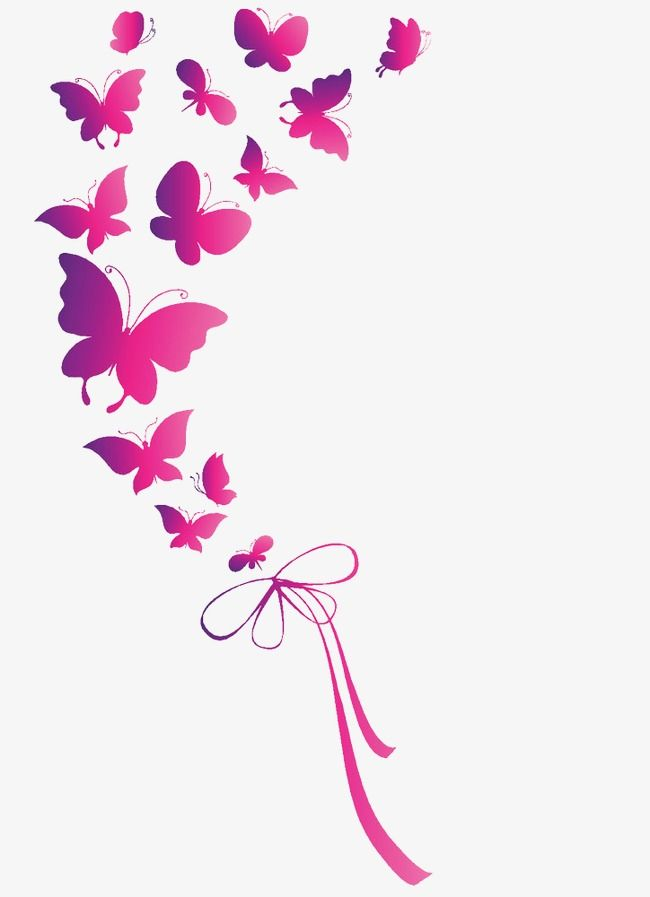 Pink Butterfly, Pink, Mariposa, Vector Archivo PNG y PSD.