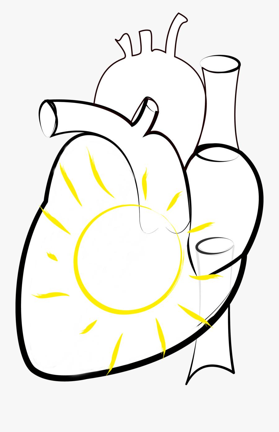 Medicine Vector Sketch.