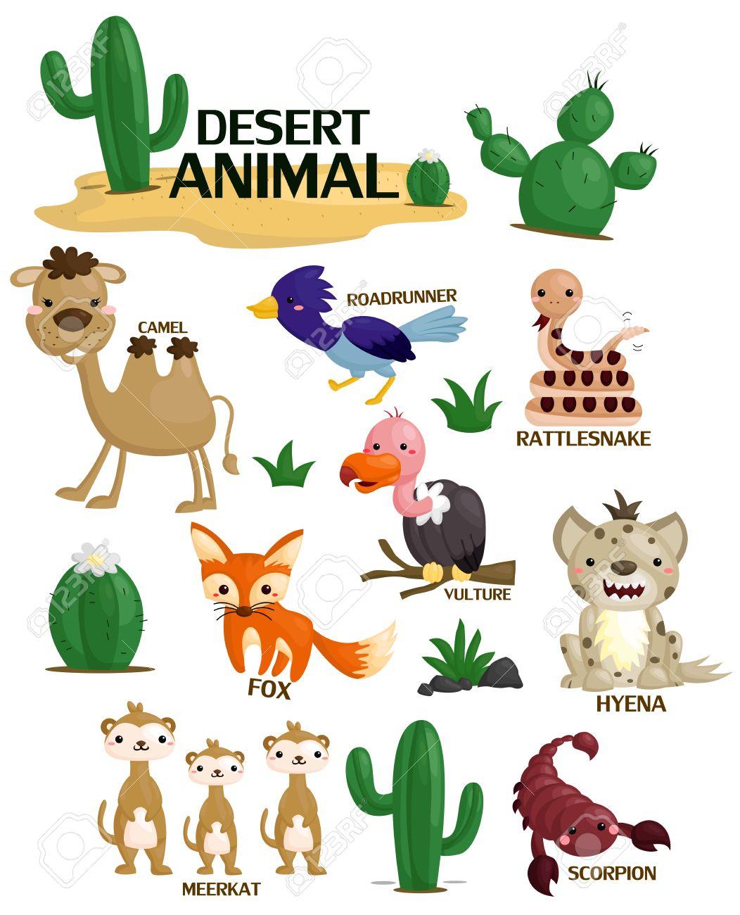 Desert Animal Vector Set.