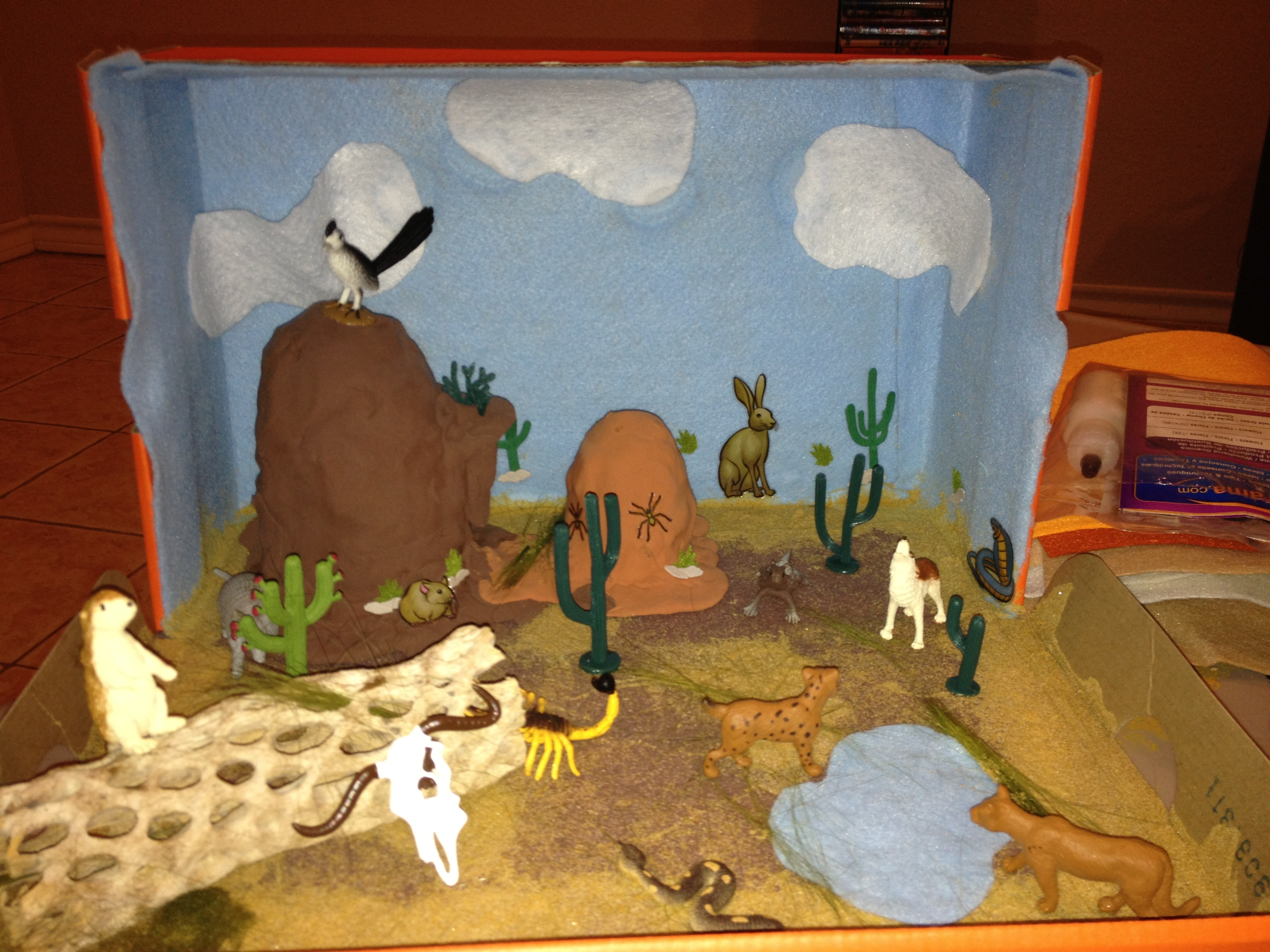 Shoebox 3D Habitat Projects.