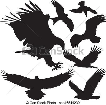Vectors of Birds of prey vector silhouettes.