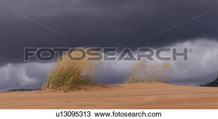Stock Photo of Clouds over a desert, Coral Pink Sand Dunes State.