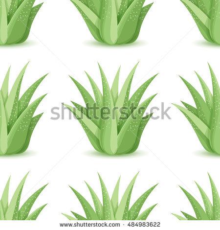 Desert Foliage Stock Photos, Royalty.