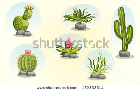 Desert Plants Stock Photos, Royalty.