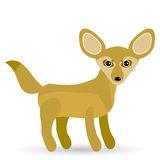 White Fennec Fox Or Desert Fox With Big Ear Stock Photo.