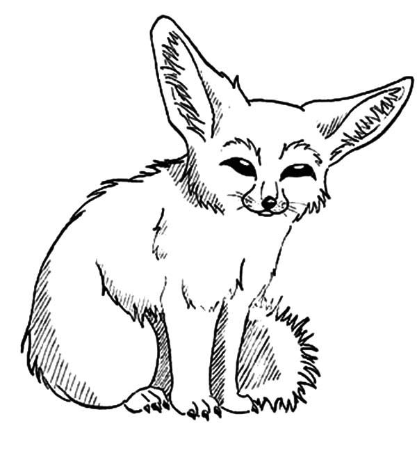 Desert fox clipart Clipground