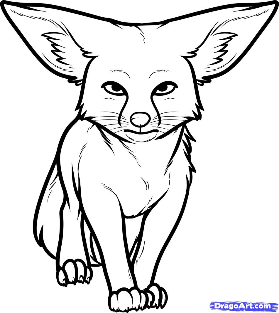 7 Images of Desert Fox Coloring Pages.