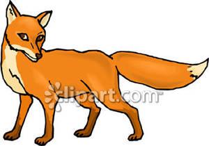 Desert fox clipart.