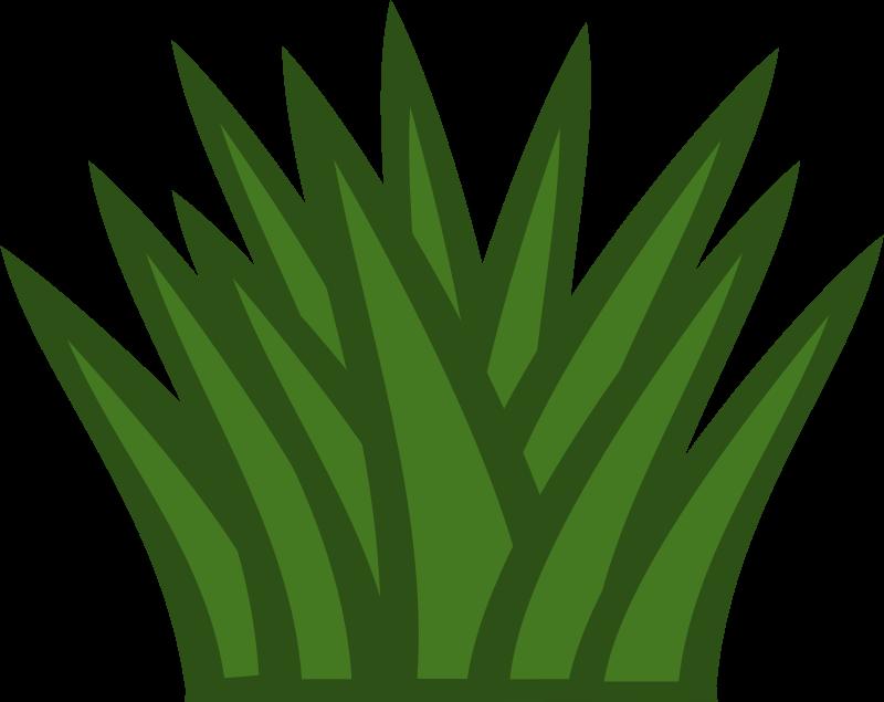 Bushes Clipart Plan Tropical Plants Clipart.