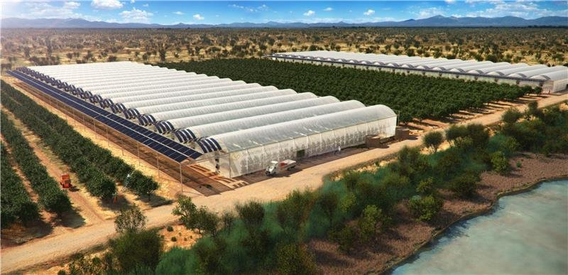 Seawater greenhouses to bring life to the desert.