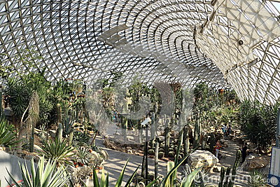 Chenshan Botanical Garden Desert Greenhouse Stock Photo.
