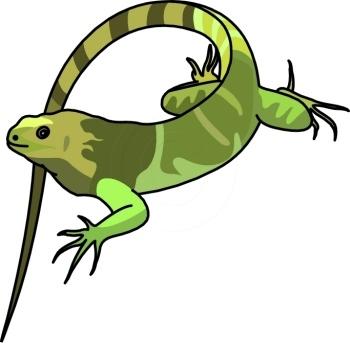 Animated iguana clipart.