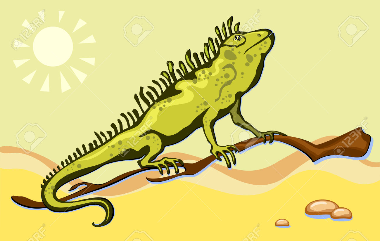 Green Lizard, Iguana In The Desert Sand Royalty Free Cliparts.