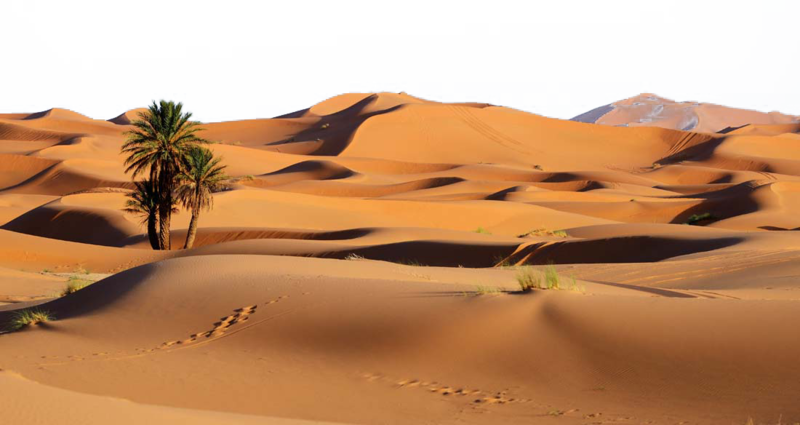 Download Free png Desert PNG Background Photo.