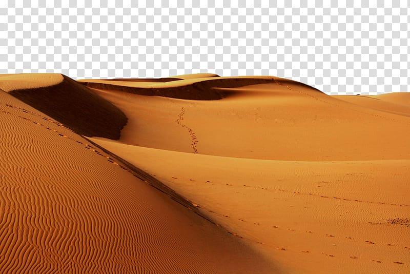 Desert sand, Sahara Erg Desert Continent Sand, desert.