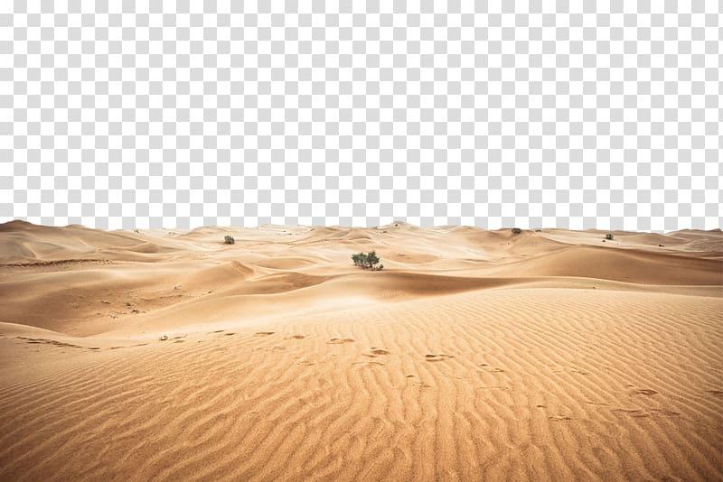 Illustration of desert sand, Sahara Erg Beer, A desert.
