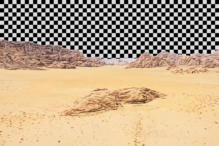 desert sand natural environment sahara aeolian landform.