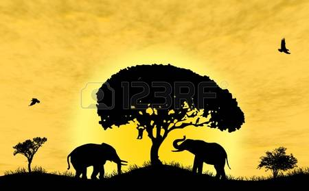 16,069 Desert Silhouette Stock Illustrations, Cliparts And Royalty.