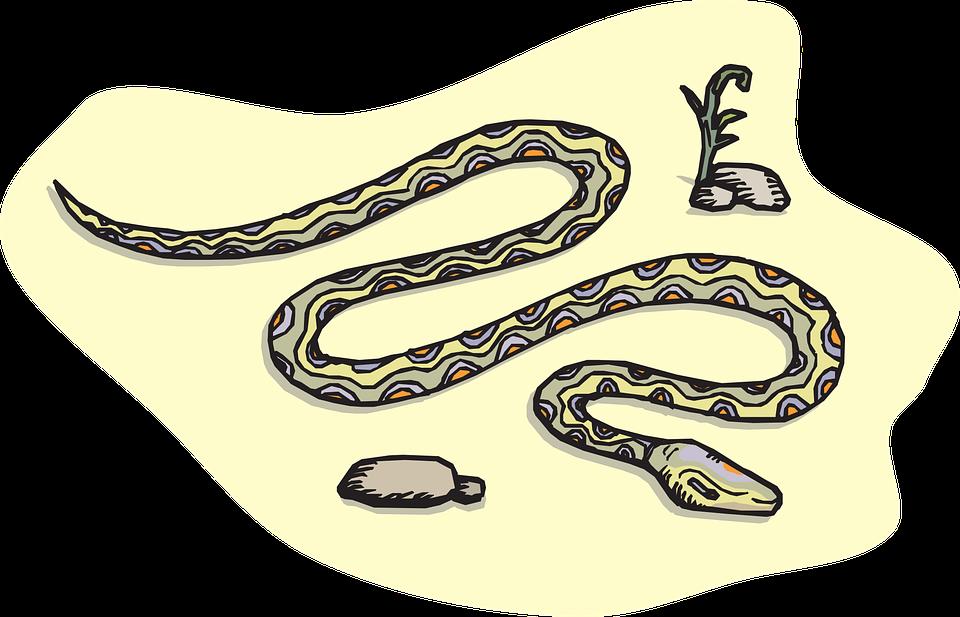 Free vector graphic: Snake, Sand, Rocks, Desert, Reptile.