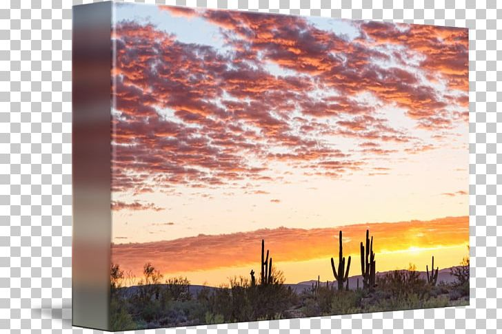 Sonoran Desert Sunrise Painting PNG, Clipart, Acrylic Paint.