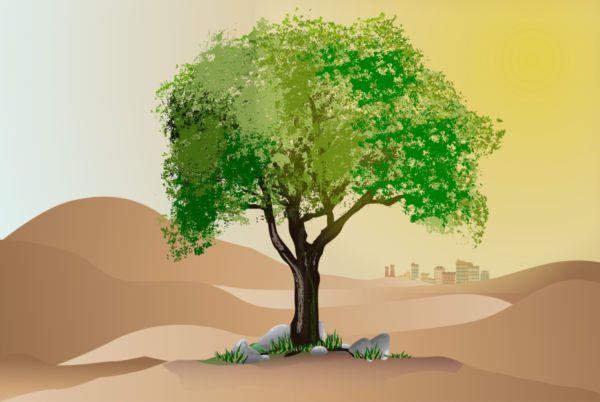 Clip art of a tree in the desert.