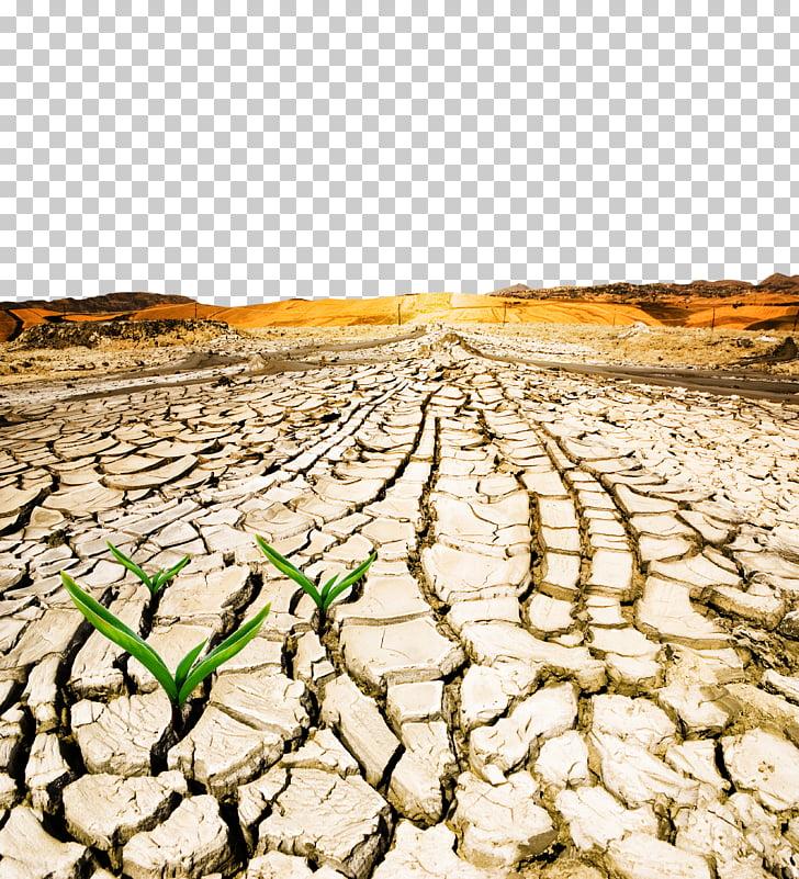 Hierba verde que crece en suelo agrietado marrón, día.