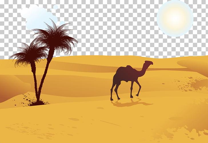 Camel Desert Computer file, camel, camel on desert.