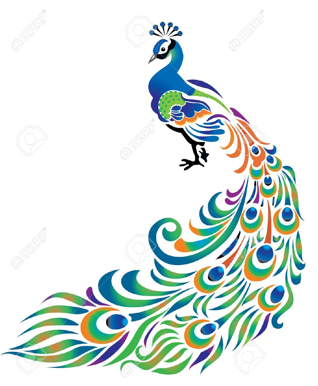 Peacock design clipart.