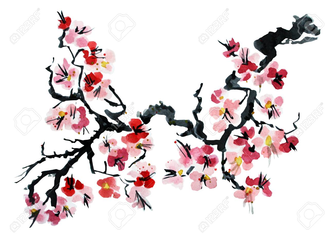 Decorative watercolor blooming sakura flowers clipart, design...
