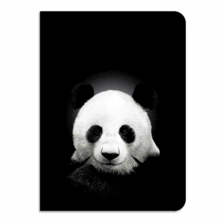 Panda Desiigner Png.