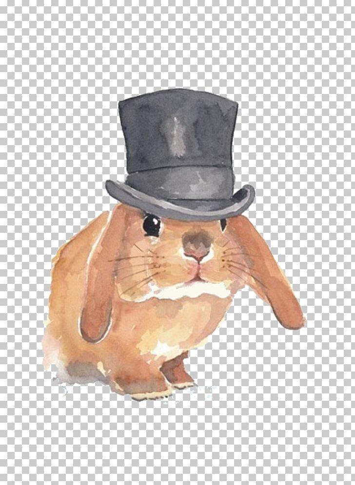 Hat Designer PNG, Clipart, Animals, Bowler Hat, Chef Hat, Christmas.