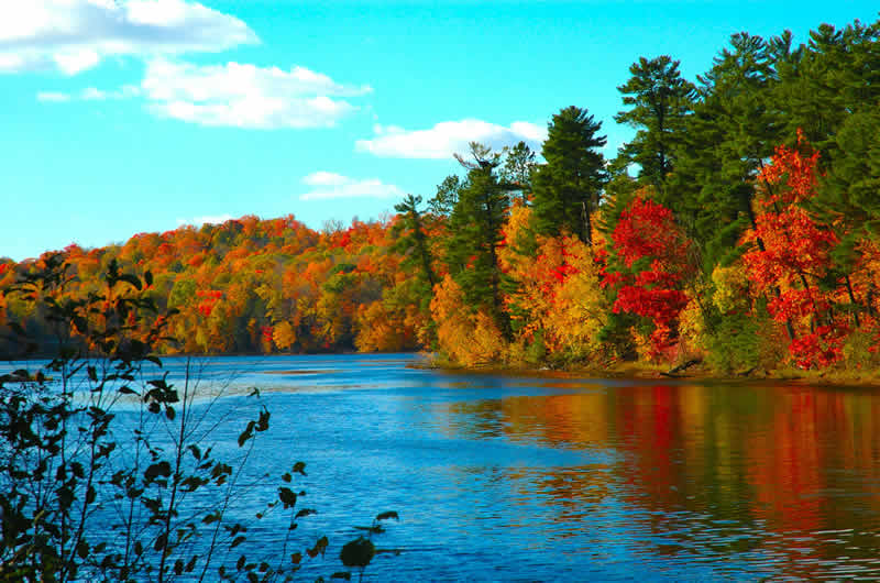 Autumn desktop clipart.