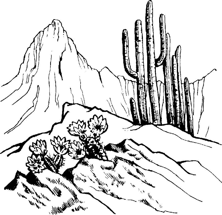 Desert Mountain Clipart.