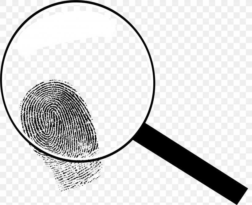 Magnifying Glass Detective Clip Art, PNG, 2934x2393px.