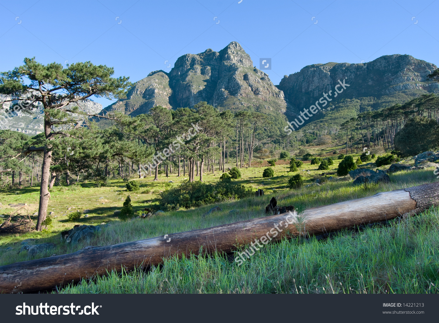 Devil'S Peak In Cape Town, South Africa. Stock Photo 14221213.