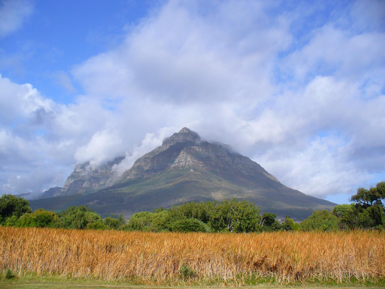 Devil's Peak landscape in Cape Town, South Africa.