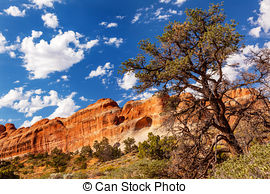 Stock Photo of Pine Tree Arch Devils Garden Arches National Park.