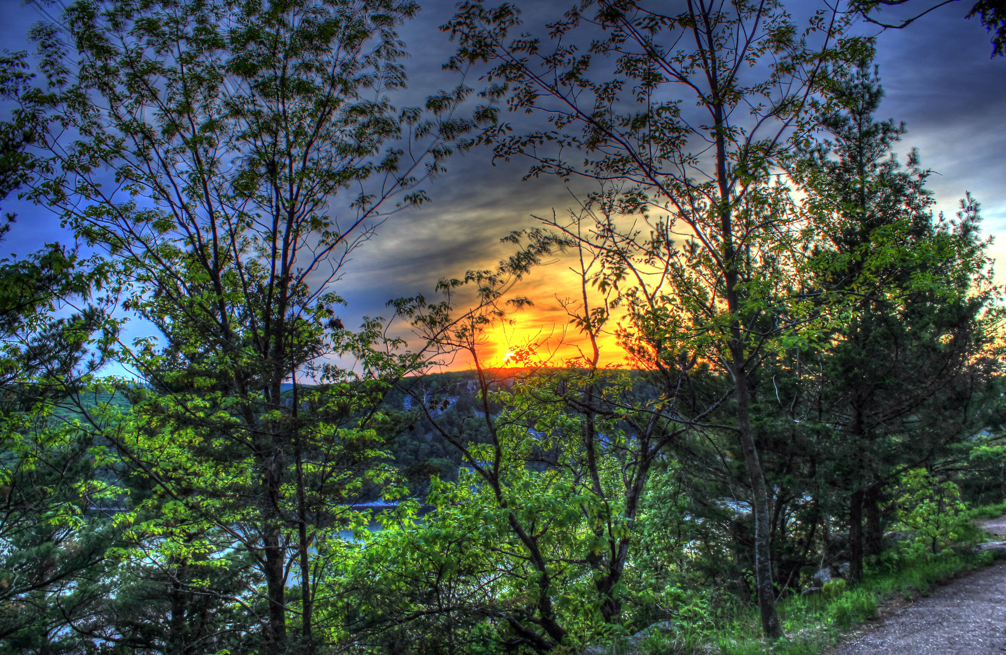 Sunset Through the Trees at Devil's Lake State Park, Wisconsin.