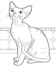 Free Devon Rex Cat Clipart.